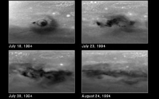 "<h1>PIA01265:  Month-long Evolution of the D/G Jupiter Impact Sites from Comet P/Shoemaker-Levy 9</h1><div class=""PIA01265"" lang=""en"" style=""width:800px;text-align:left;margin:auto;background-color:#000;padding:10px;max-height:150px;overflow:auto;""><p>This series of snapshots, taken with NASA's Hubble Space Telescope, shows evolution of the comet P/Shoemaker-Levy 9 impact region called the D/G complex. This feature was produced by two nuclei of comet P/Shoemaker-Levy 9 that collided with Jupiter on 17 and 18 July 1994, respectively, and was later modified again by the impact of the S fragment on 21 July 1994.<p>Upper Left: This first image was taken about 90 minutes after the G impact on 18 July 1994. Nearly all of the structure in this image was created by the impact of fragment G, although a small dark spot to the left was the remainder of small fragment D that collided one day earlier. The explosion of the nucleus in Jupiter's atmosphere created the unique ring structure, which may be analogous to a ""sonic boom"" on Earth. Though this structure is best seen for the G impact, it is not unique. Hubble reveals similar rings around several other fresh impact sites. They are all clear evidence for coherent outward motion of this wave phenomena.<p>Upper right: This second image, obtained on 23 July, shows that the Jovian winds have swept the material into a striking ""curly-cue"" structure.<p>Lower left, right: The structure seen in earlier views has disappeared rapidly in the images taken on 30 July and 24 August, respectively. Almost all of the changes between the images are due to Jupiter's east-west winds that play a key role in the dispersing of the dark material.<p>Hubble Space Telescope's high resolution will allow astronomers to continue to trace the impact debris as it is transported by the Jovian winds. This information promises to advance current understanding of the physics of Jupiter's atmosphere.<p>These black and white images were taken in near-ultraviolet light with the Wide Field Planetary Camera 2. They have been processed to correct for the curvature of Jupiter, so that the impact region appears flat, as if the viewer were hovering directly overhead. Each image is centered on -46 degrees latitude and 28 degrees. The north-south extent in the image spans from -26 to -66 deg. latitude and the east-west extent of the region spans +/- 30 degrees on either side of 28 degrees longitude.<p>This image and other images and data received from the Hubble Space Telescope are posted on the World Wide Web on the Space Telescope Science Institute home page at URL <a href=""http://oposite.stsci.edu/"" class=""external free"" target=""wpext"">http://oposite.stsci.edu/</a>.<br /><br /><a href=""http://photojournal.jpl.nasa.gov/catalog/PIA01265"" onclick=""window.open(this.href); return false;"" title=""Voir l'image 	 PIA01265:  Month-long Evolution of the D/G Jupiter Impact Sites from Comet P/Shoemaker-Levy 9	  sur le site de la NASA"">Voir l'image 	 PIA01265:  Month-long Evolution of the D/G Jupiter Impact Sites from Comet P/Shoemaker-Levy 9	  sur le site de la NASA.</a></div>"
