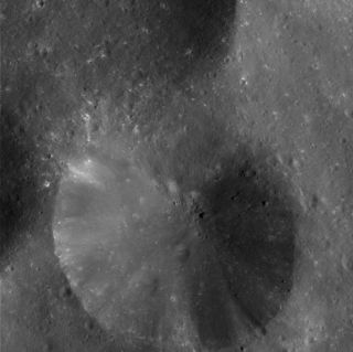 "<h1>PIA06068:  Crater Close-up on Phoebe</h1><div class=""PIA06068"" lang=""en"" style=""width:800px;text-align:left;margin:auto;background-color:#000;padding:10px;max-height:150px;overflow:auto;""><p>This eye-popping high-resolution image of Phoebe's pitted surface taken very near closest approach shows a 13-kilometer (8-mile) diameter crater with a debris-covered floor. Part of another crater of similar size is visible at left, as is part of a larger crater at top and many scattered smaller craters. The radial streaks in the crater are due to down slope movements of loose fragments from impact ejecta. Also seen are boulders ranging from about 50 to 300 meters (160 to 990 feet) in diameter. The building-sized rocks may have been excavated by large impacts, perhaps from some other region of Phoebe rather than the craters seen here. There is no visible evidence for layering of ice and dark material or a hardened crust in this region, as on other parts of this moon.</p><p>Some of the relatively bright spots are from small impacts that excavated bright material from beneath the dark surface. Images like this provide information about impact processes on Phoebe.</p><p>This image was obtained at a phase, or Sun-Phoebe-spacecraft, angle of 78 degrees, and from a distance of 11,918 kilometers (7,407 miles). The image scale is approximately 18.5 meters (60.5 feet) per pixel. The illumination is from the right. No enhancement was performed on this image.</p><p>The Cassini-Huygens mission is a cooperative project of NASA, the European Space Agency and the Italian Space Agency. The Jet Propulsion Laboratory, a division of the California Institute of Technology in Pasadena, manages the Cassini-Huygens mission for NASA's Office of Space Science, Washington, D.C. The Cassini orbiter and its two onboard cameras, were designed, developed and assembled at JPL. The imaging team is based at the Space Science Institute, Boulder, Colo.</p><p>For more information, about the Cassini-Huygens mission visit, <a href=""http://saturn.jpl.nasa.gov/"">http://saturn.jpl.nasa.gov</a> and the Cassini imaging team home page, <a href=""http://ciclops.org/"">http://ciclops.org</a>.</p><br /><br /><a href=""http://photojournal.jpl.nasa.gov/catalog/PIA06068"" onclick=""window.open(this.href); return false;"" title=""Voir l'image 	 PIA06068:  Crater Close-up on Phoebe	  sur le site de la NASA"">Voir l'image 	 PIA06068:  Crater Close-up on Phoebe	  sur le site de la NASA.</a></div>"