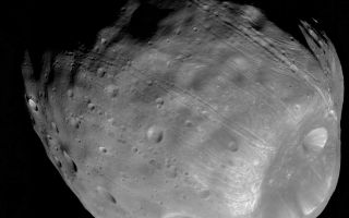 "<h1>PIA10367:  Phobos from 5,800 Kilometers</h1><div class=""PIA10367"" lang=""en"" style=""width:800px;text-align:left;margin:auto;background-color:#000;padding:10px;max-height:150px;overflow:auto;""><p>The High Resolution Imaging Science Experiment (HiRISE) camera on NASA's Mars Reconnaissance Orbiter took two images of the larger of Mars' two moons, Phobos, within 10 minutes of each other on March 23, 2008. This is the second, taken from a distance of about 5,800 kilometers (about 3,600 miles). The illuminated part of Phobos seen in the images is about 21 kilometers (13 miles) across.</p><p>The most prominent feature in the images is the large crater Stickney in the lower right. With a diameter of 9 kilometers (5.6 miles), it is the largest feature on Phobos. A series of troughs and crater chains is obvious on other parts of the moon. Although many appear radial to Stickney in this image, recent studies from the European Space Agency's Mars Express orbiter indicate that they are not related to Stickney. Instead, they may have formed when material ejected from impacts on Mars later collided with Phobos. The lineated textures on the walls of Stickney and other large craters are landslides formed from materials falling into the crater interiors in the weak Phobos gravity (less than one one-thousandth of the gravity on Earth).</p><p>In the full-resolution version of this image, a pixel encompasses 5.8 meters (19 feet), providing a resolution (smallest visible feature) of about 15 meters (about 50 feet). Previous pictures from NASA's Mars Global Surveyor are of slightly higher resolution, at 4 meters (13 feet) per pixel. However, the HiRISE images have higher signal-to-noise, making the new data some of the best ever for Phobos. </p><p>Although the image is displayed here in black and white, data from HiRISE's three color channels were used to give higher signal-to-noise, thereby increasing detail. The image is in the HiRISE catalog as PSP_007769_9015.</p><p>NASA's Jet Propulsion Laboratory, a division of the California Institute of Technology in Pasadena, manages the Mars Reconnaissance Orbiter for NASA's Science Mission Directorate, Washington. Lockheed Martin Space Systems, Denver, is the prime contractor for the project and built the spacecraft. The High Resolution Imaging Science Experiment is operated by the University of Arizona, Tucson, and the instrument was built by Ball Aerospace & Technologies Corp., Boulder, Colo.<br /><br /><a href=""http://photojournal.jpl.nasa.gov/catalog/PIA10367"" onclick=""window.open(this.href); return false;"" title=""Voir l'image 	 PIA10367:  Phobos from 5,800 Kilometers	  sur le site de la NASA"">Voir l'image 	 PIA10367:  Phobos from 5,800 Kilometers	  sur le site de la NASA.</a></div>"