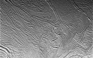 "<h1>PIA11120:  Enceladus Oct. 9, 2008 Flyby - Posted Image #2</h1><div class=""PIA11120"" lang=""en"" style=""width:512px;text-align:left;margin:auto;background-color:#000;padding:10px;max-height:150px;overflow:auto;""><p>This image was taken during Cassini's extremely close encounter with Enceladus on Oct. 9, 2008.</p><p>The image was taken with the Cassini spacecraft narrow-angle camera on Oct. 9, 2008, a distance of approximately 26,000 kilometers (16,000 miles) from Enceladus. Image scale is 312 meters (1,024 feet) per pixel.</p><p>The Cassini-Huygens mission is a cooperative project of NASA, the European Space Agency and the Italian Space Agency. The Jet Propulsion Laboratory, a division of the California Institute of Technology in Pasadena, manages the mission for NASA's Science Mission Directorate, Washington, D.C. The Cassini orbiter and its two onboard cameras were designed, developed and assembled at JPL. The imaging operations center is based at the Space Science Institute in Boulder, Colo.</p><p>For more information about the Cassini-Huygens mission visit <a href=""http://saturn.jpl.nasa.gov"" class=""external free"" target=""wpext"">http://saturn.jpl.nasa.gov/</a>. The Cassini imaging team homepage is at <a href=""http://ciclops.org"" class=""external free"" target=""wpext"">http://ciclops.org</a>.<br /><br /><a href=""http://photojournal.jpl.nasa.gov/catalog/PIA11120"" onclick=""window.open(this.href); return false;"" title=""Voir l'image 	 PIA11120:  Enceladus Oct. 9, 2008 Flyby - Posted Image #2	  sur le site de la NASA"">Voir l'image 	 PIA11120:  Enceladus Oct. 9, 2008 Flyby - Posted Image #2	  sur le site de la NASA.</a></div>"