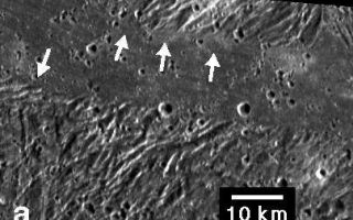 "<h1>PIA03216:  Ridges and Troughs in Sippar Sulcus, Ganymede</h1><div class=""PIA03216"" lang=""en"" style=""width:404px;text-align:left;margin:auto;background-color:#000;padding:10px;max-height:150px;overflow:auto;""><p>Embayment of ridges and troughs in a portion of the Sippar Sulcus area of Jupiter's moon Ganymede in this image from NASA's Galileo spacecraft is interpreted as evidence that the low-lying area was filled in by flooding with low-viscosity material, such as water or water-ice slush lavas. Bays of the material appeared to have formed in troughs (indicated by arrows) between the ridges.</p><p>The smallest features visible are about 180 meters (590 feet) across. Analysis of such high-resolution images in combination with estimates of the features' relative elevations is helping scientists interpret the roles of volcanism and tectonics in creating the bright terrain on Ganymede.</p><p>This image was prepared by the Lunar and Planetary Institute, Houston, and included in a report by Dr. Paul Schenk et al. in the March 1, 2001, edition of the journal Nature.</p><p>The Jet Propulsion Laboratory, a division of the California Institute of Technology in Pasadena, manages the Galileo mission for NASA's Office of Space Science, Washington, D.C.</p><p>Images and data received from Galileo are posted on the Galileo mission home page at <a href=""http://www2.jpl.nasa.gov/galileo/"">http://www2.jpl.nasa.gov/galileo/</a>. Background information and educational context for the images can be found at <a href=""http://www2.jpl.nasa.gov/galileo/sepo/"">http://www2.jpl.nasa.gov/galileo/sepo/</a>.<br /><br /><a href=""http://photojournal.jpl.nasa.gov/catalog/PIA03216"" onclick=""window.open(this.href); return false;"" title=""Voir l'image 	 PIA03216:  Ridges and Troughs in Sippar Sulcus, Ganymede	  sur le site de la NASA"">Voir l'image 	 PIA03216:  Ridges and Troughs in Sippar Sulcus, Ganymede	  sur le site de la NASA.</a></div>"